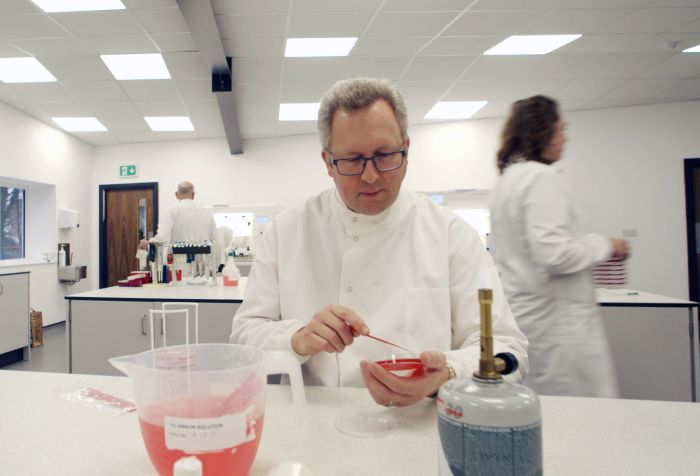 Man in laboratory with petry dish