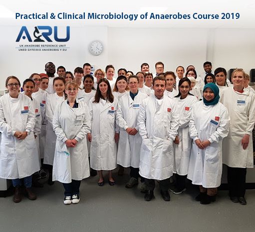 Practical and Clinical Microbiology of Anaerobes Course Team Photo