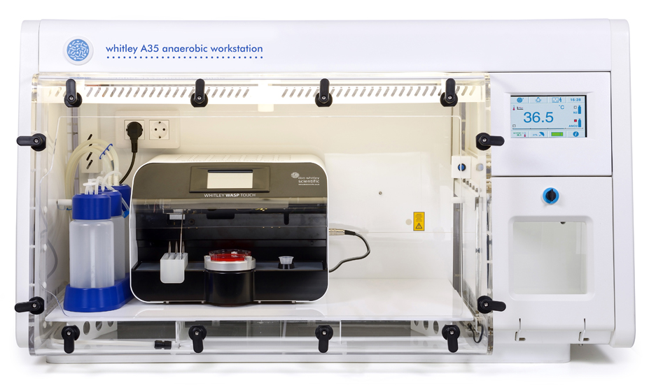 Whitley A35 Anaerobic Workstation