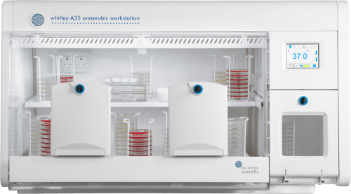 Whitley Anaerobic Workstations